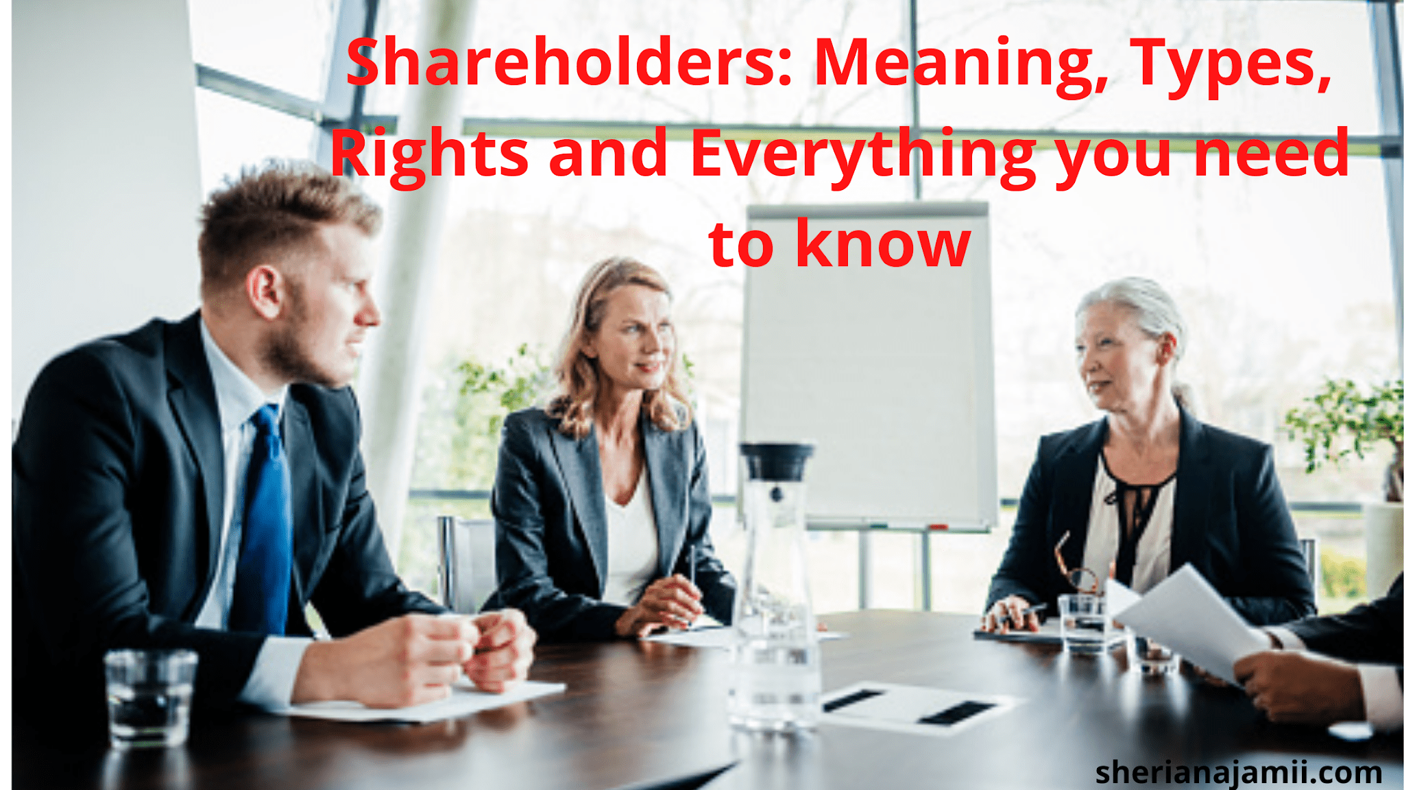 meaning of shareholders. who may become a shareholder, types of shareholders, rights of shareholders, how to become a shareholder, how to cease to be a shareholder